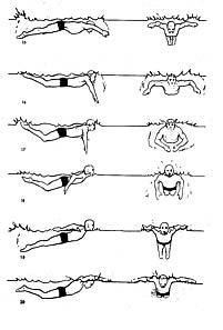 آموزش شنا پروانه